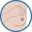 L'auto-palpation  - Je me fais un examen des seins