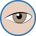 J'ai rendez-vous chez l'ophtalmo - la consultation